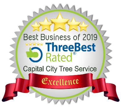 voted top 3 tree service st albert 2018